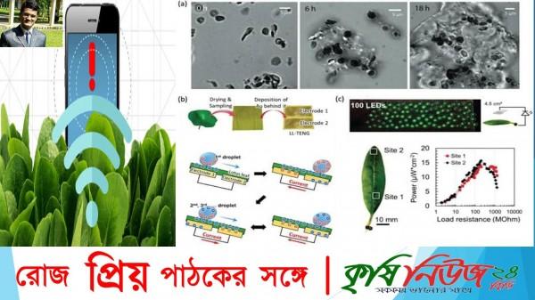""""""" কৃষি অন্বেষণ""""পর্ব-১৪#বিষয়ঃপ্রযুক্তির কৃষিঃ প্লান্ট ন্যানোবায়োনিকস (Plant Nanobionics)"""